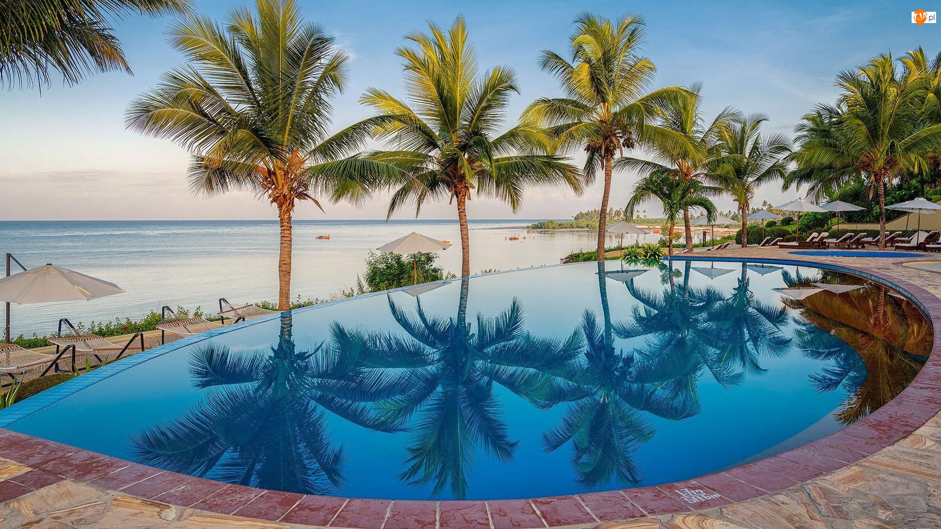 Basen, Hotel, Tanzania, Palmy, Wyspa Zanzibar, Mangapwani, Sea Cliff Resort Spa