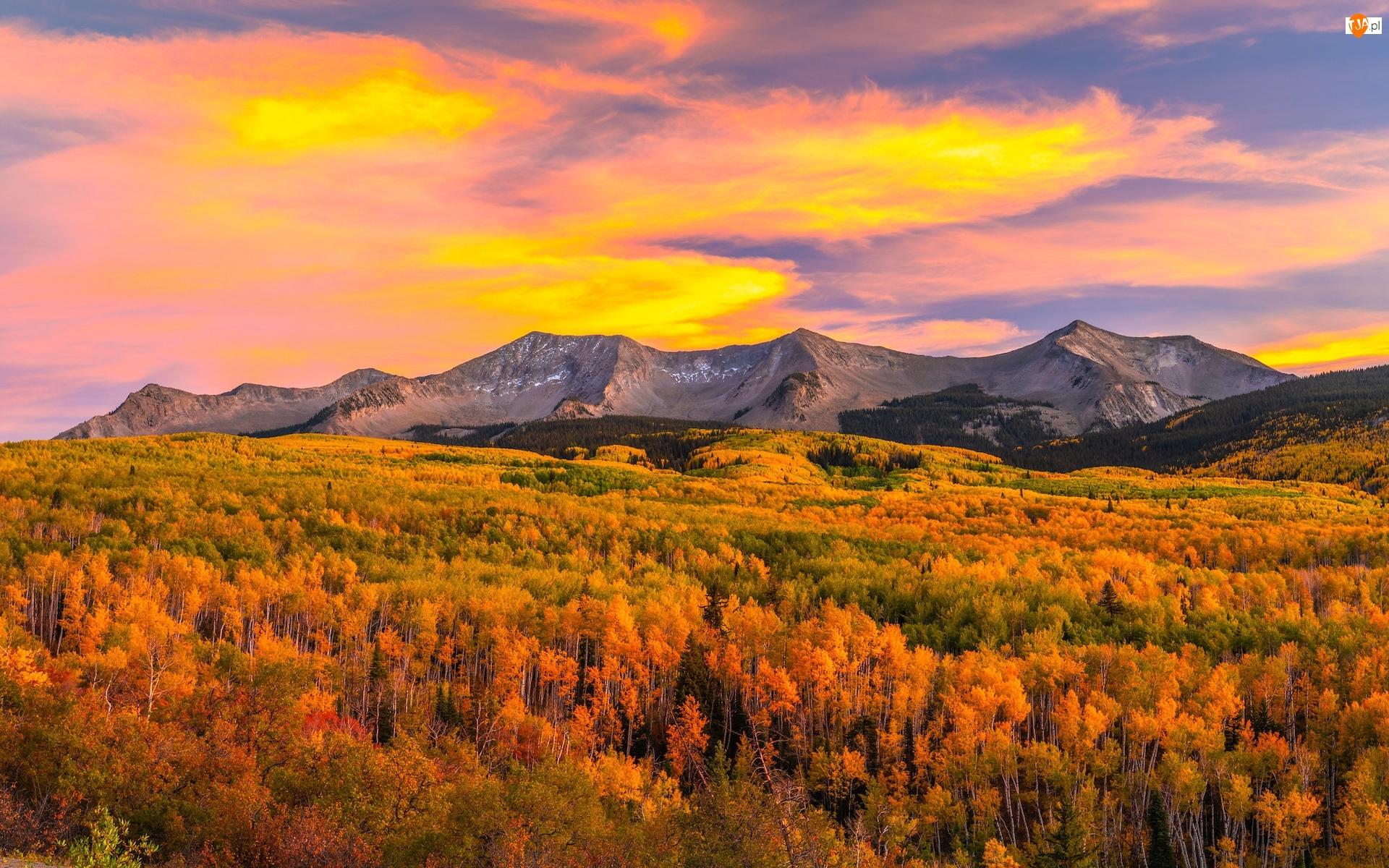 Kolorado, Przełęcz, Lasy, Stany Zjednoczone, Jesień, Góry, Kebler Pass