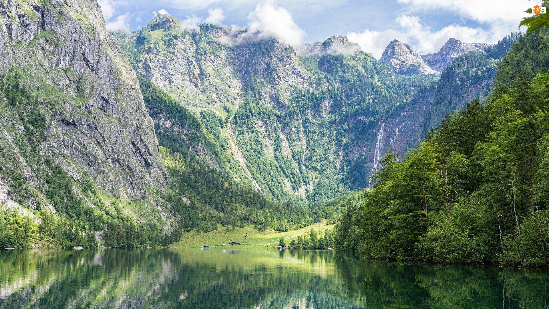 Jezioro Konigssee, Park Narodowy Berchtesgaden, Alpy, Niemcy, Góry, Drzewa Bawaria