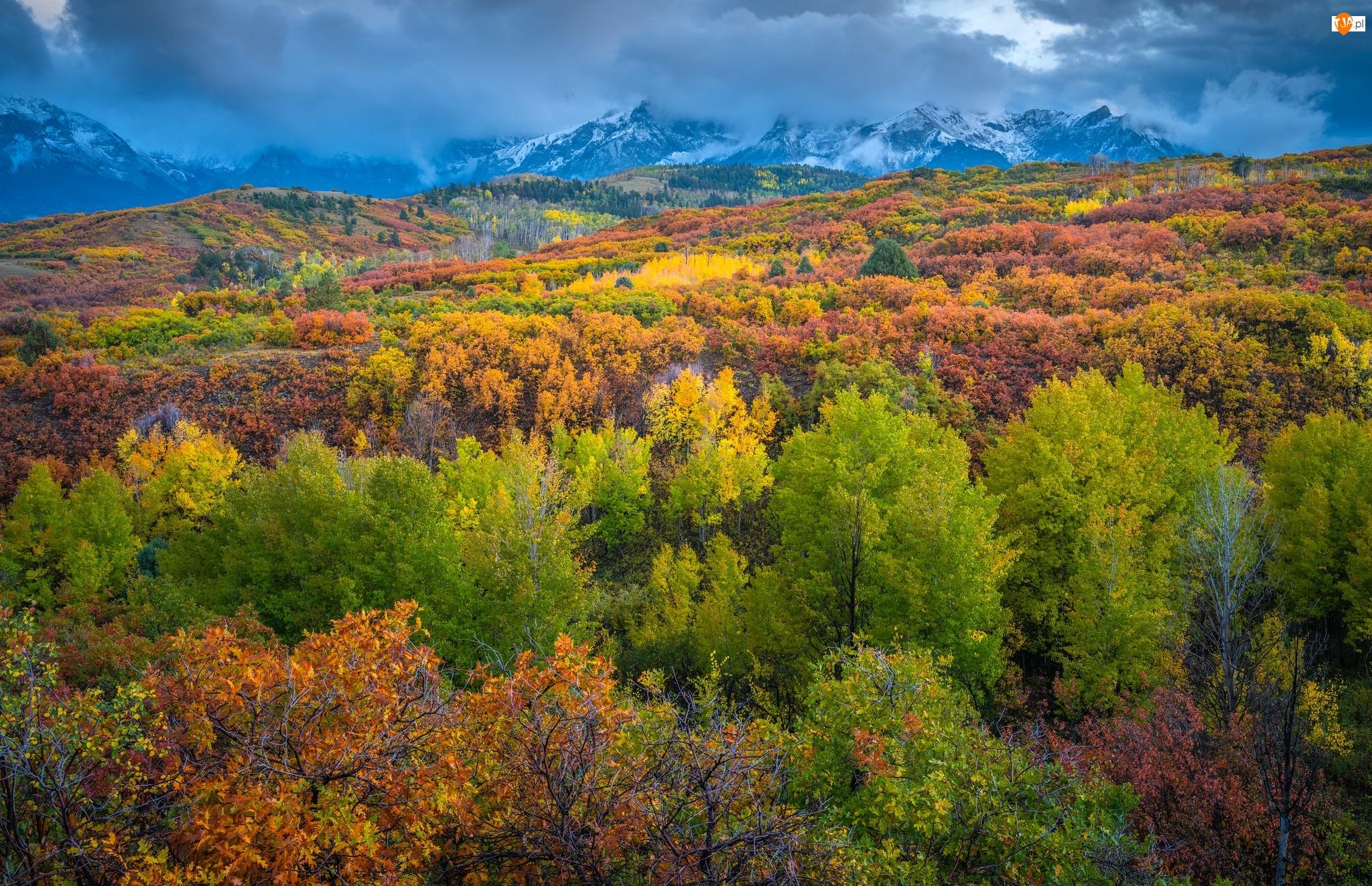 Góry, Drzewa, Zamglone, Jesień, Kolorowe