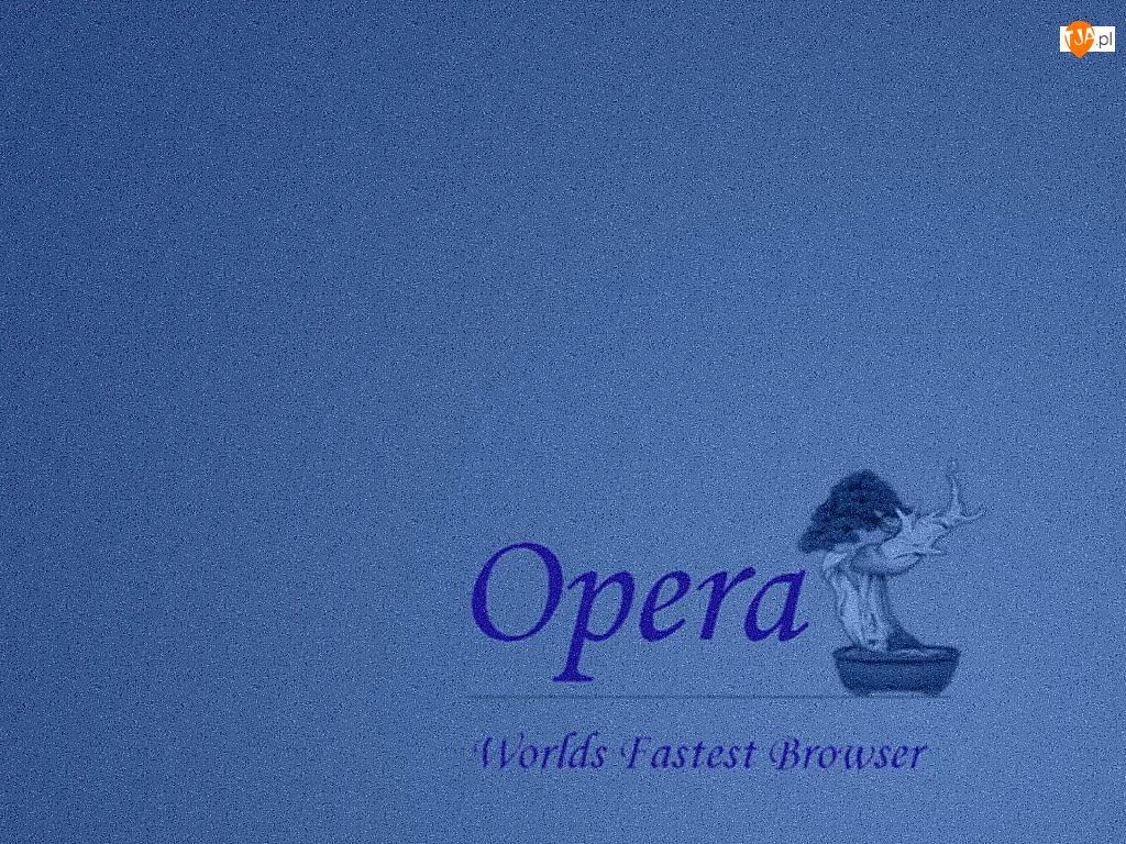 Opera, grafika, bosai, drzewo
