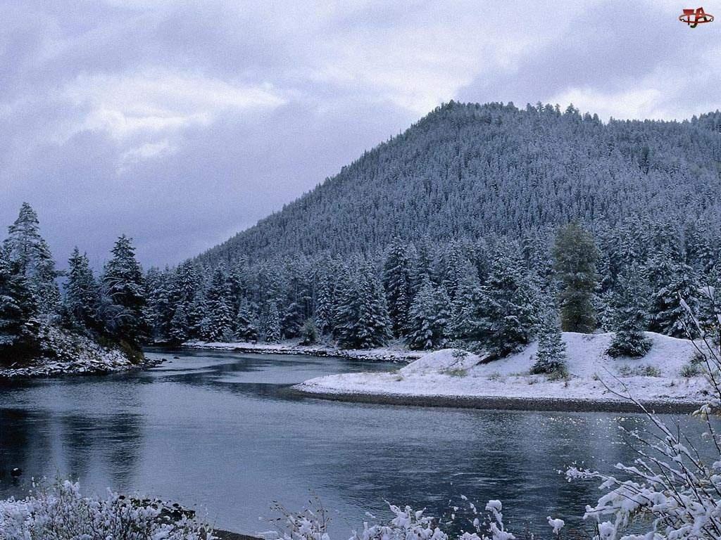 Zbocze, Rzeka, Góry, Świerki