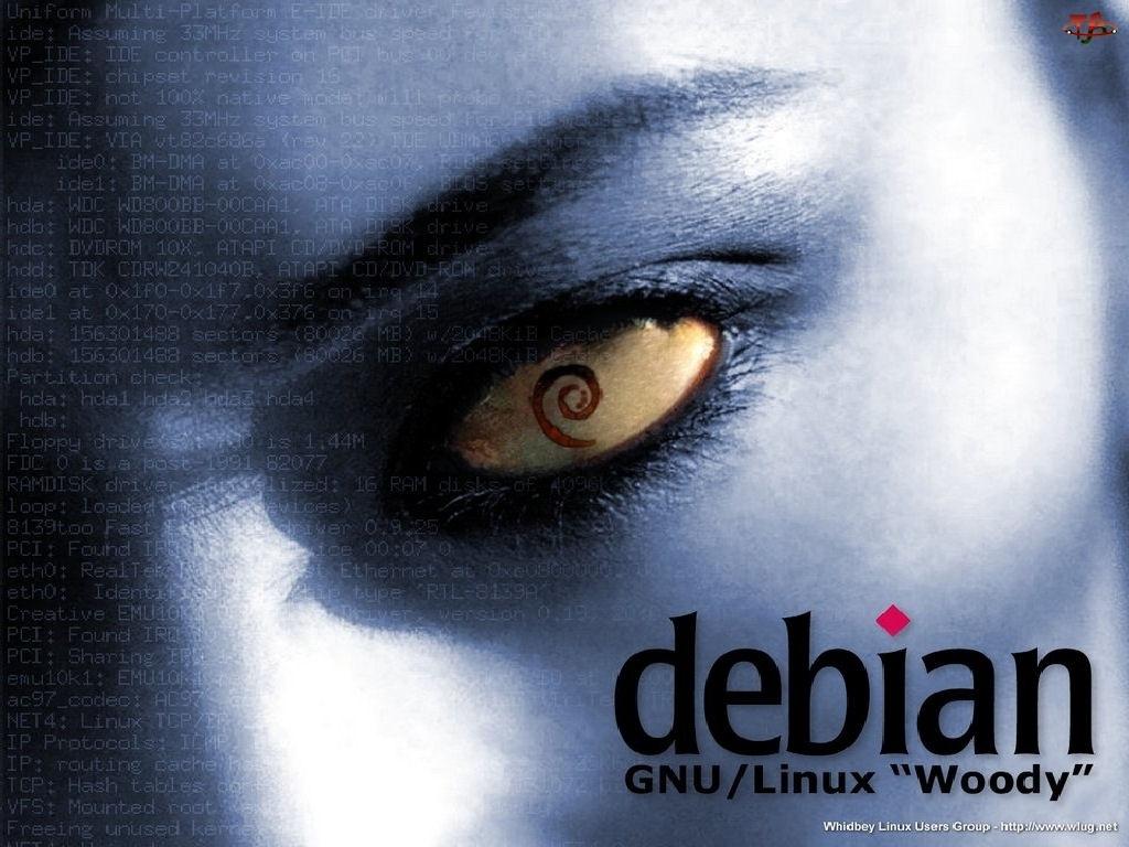 oko, zawijas, muszla, grafika, rzęsy, ślimak, Linux Debian