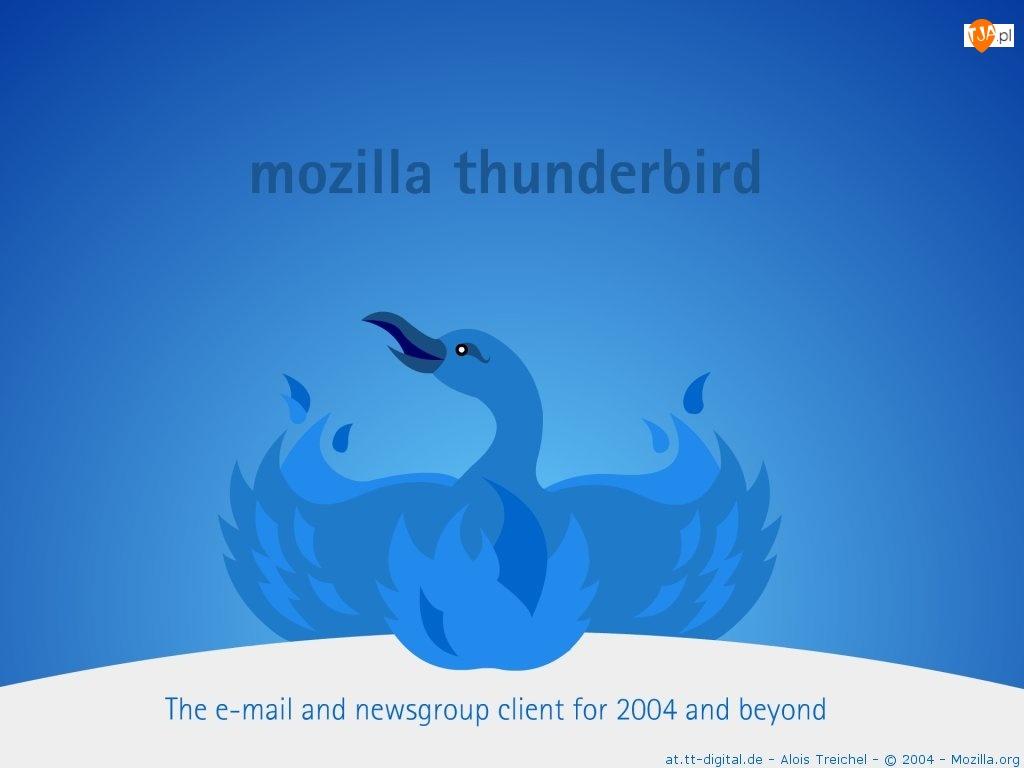 Thunderbird, ptak