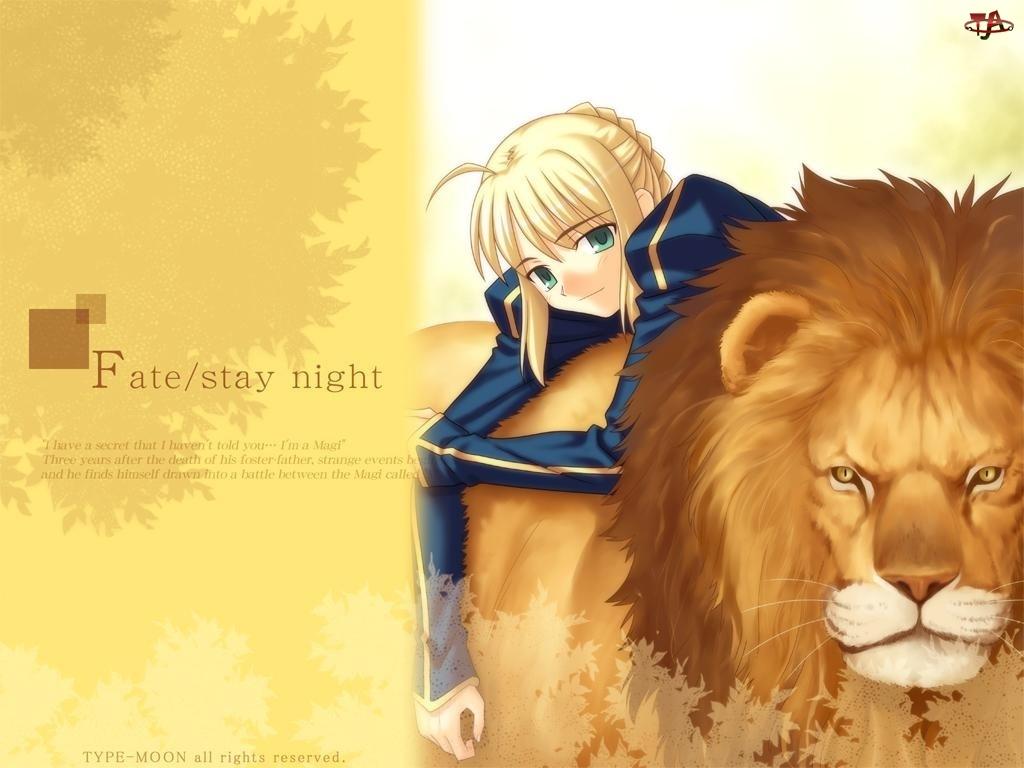 Fate Stay Night, lew, kobieta