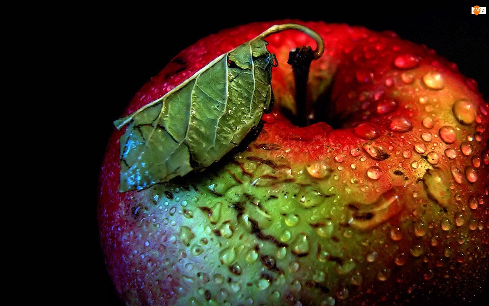 Jabłko, Wody, Liść, Krople