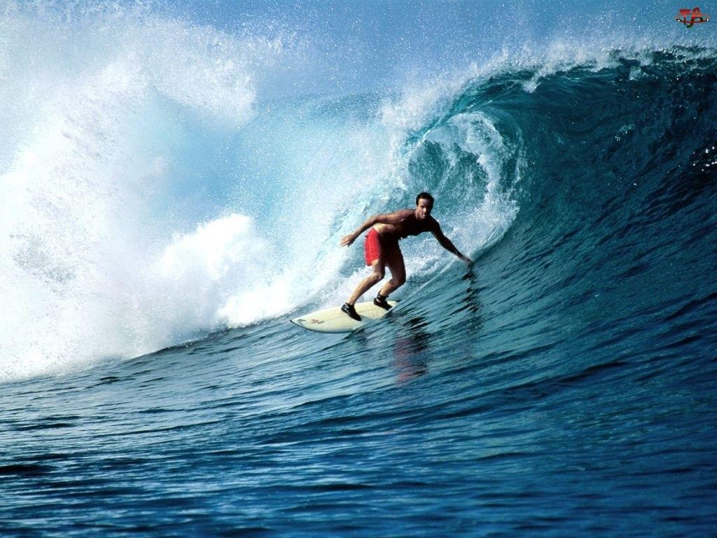 Surfing, Fala