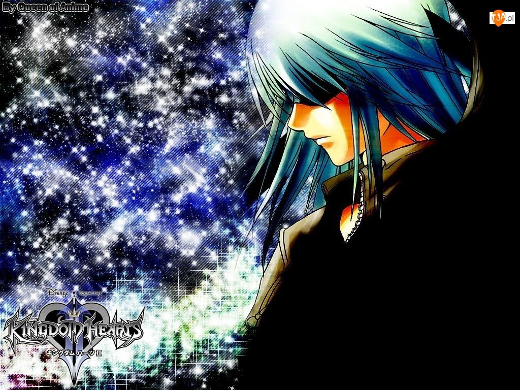 twarz, Kingdom Hearts, postać, gwiazdy