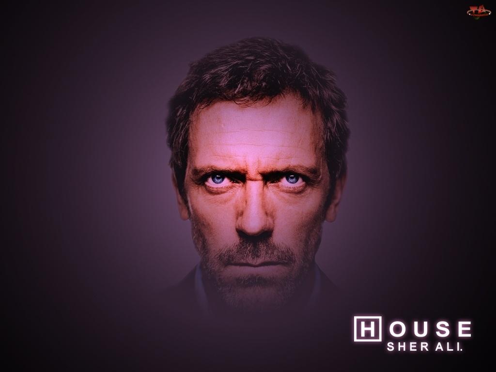 Głowa, Dr. House, Hugh Lauriego
