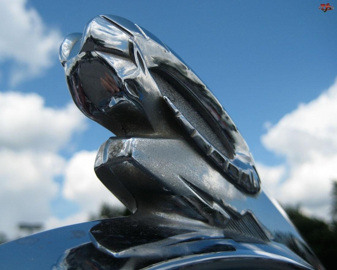 Dodge Coronet, Stary, Emblemat