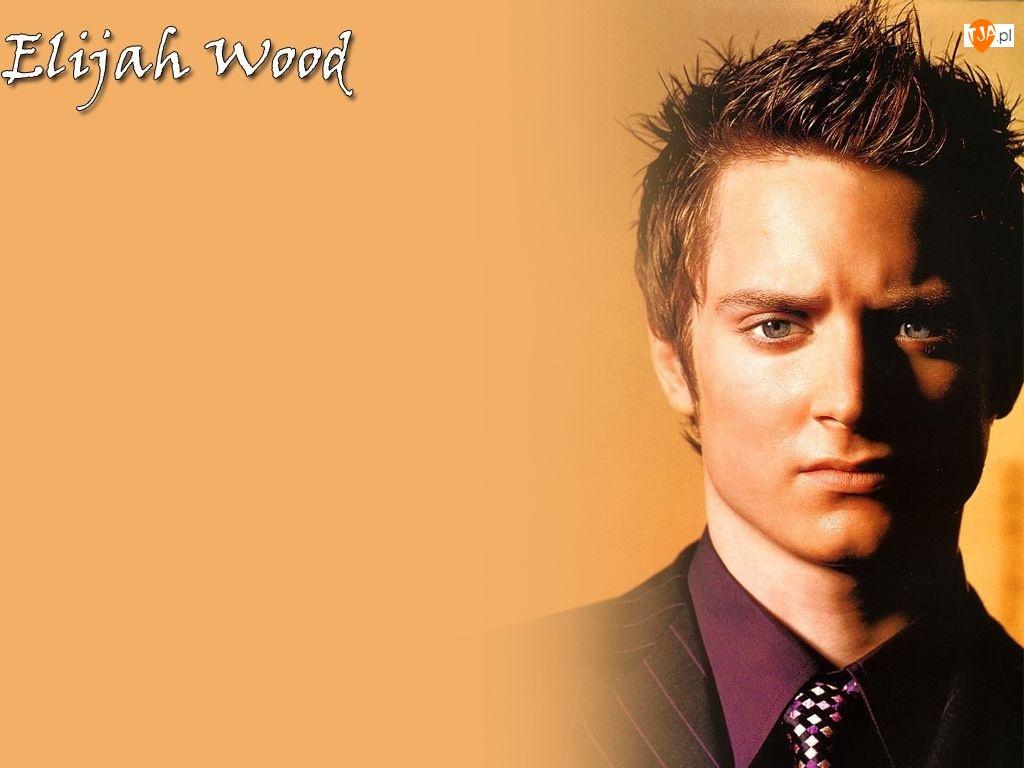 krawat, Elijah Wood, fioletowa koszula