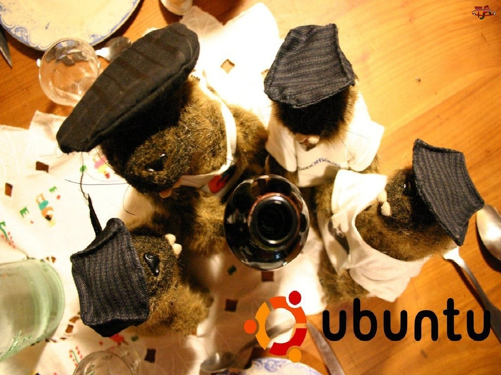 Ubuntu, krąg, misie, maskotki