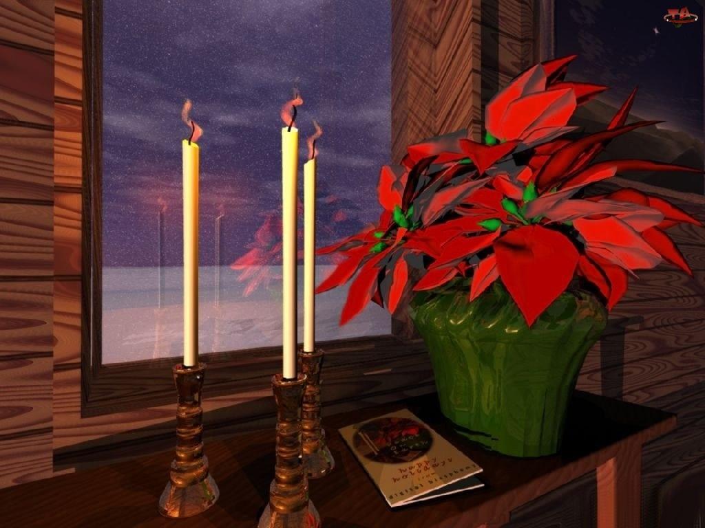 Dekoracja, Boże Narodzenie, gwiazda betlejemska, Świeczki