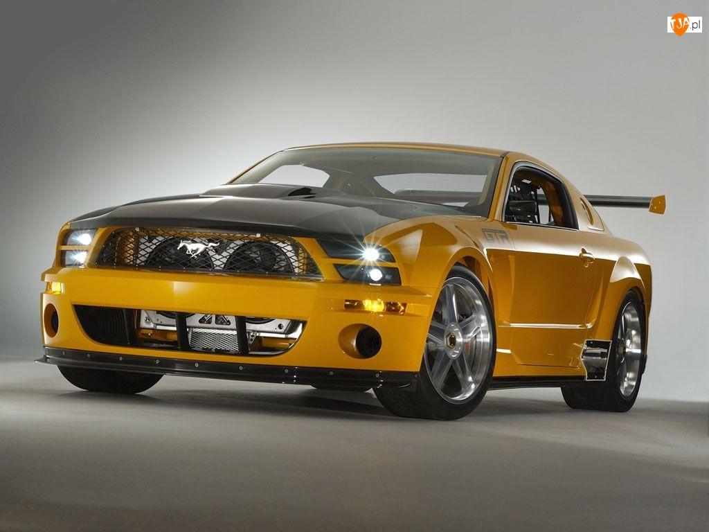 Shelby, GTR