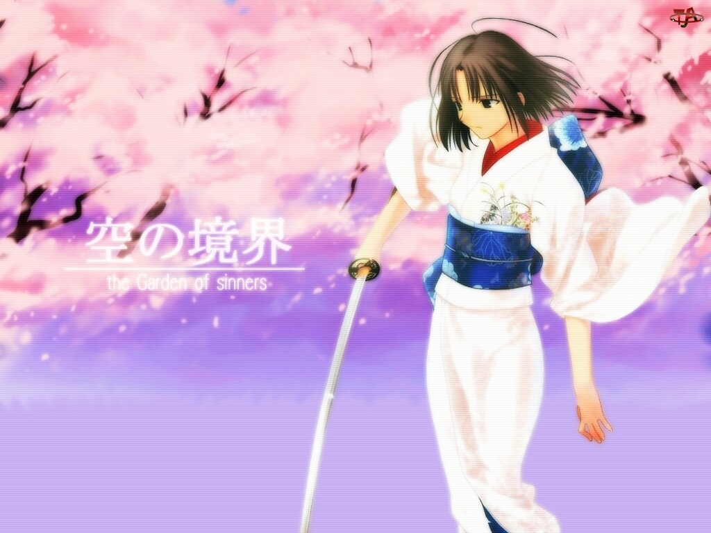 miecz, Sakura Wars, ciemne włosy