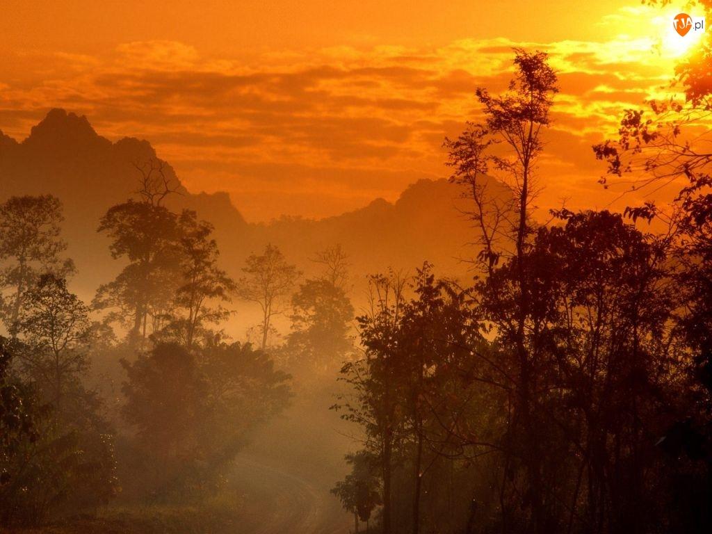 Tajlandia, Góra, Drzewo, Zachód Słońca