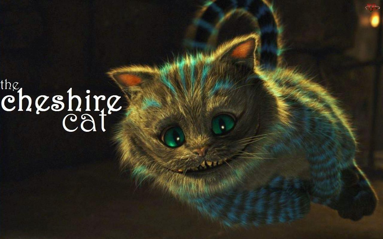 Kot, Alicja w Krainie Czarów, Alice in Wonderland