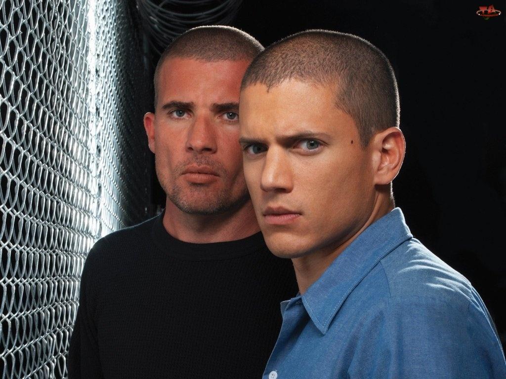 Prison Break, bracia, siatka, ogrodzenie