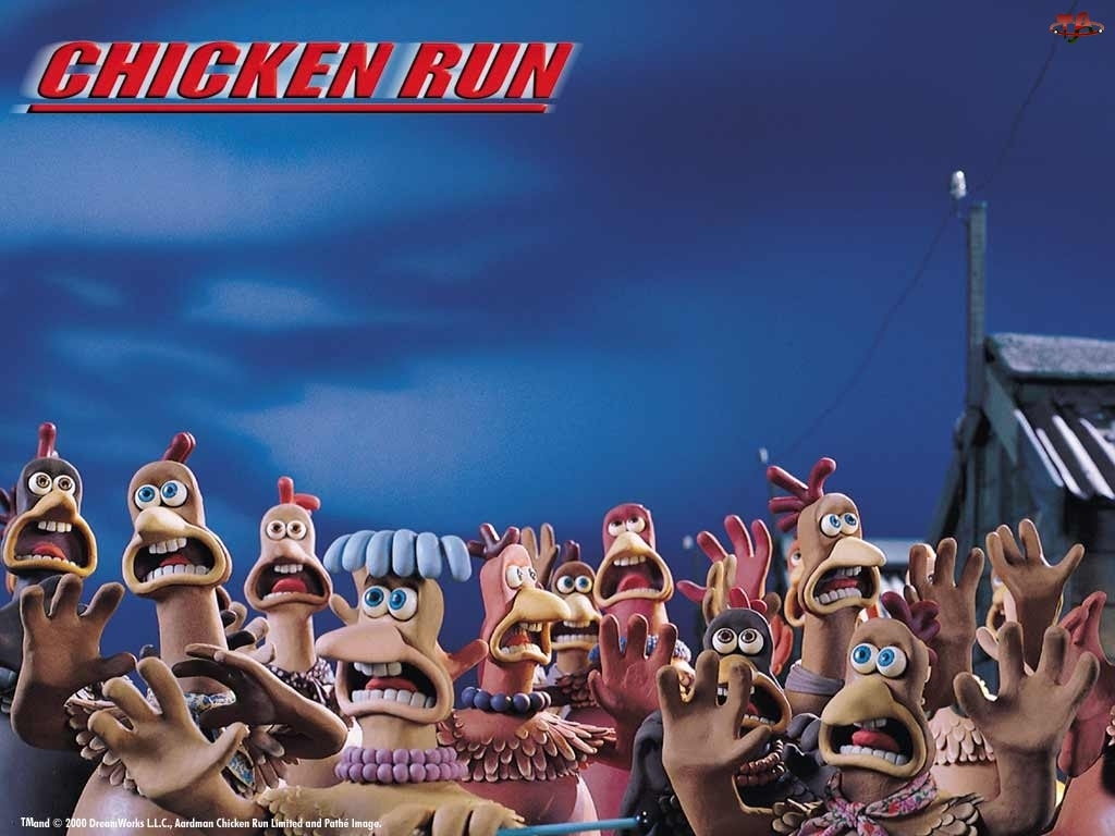 dzioby, przestraszone, kurczaki