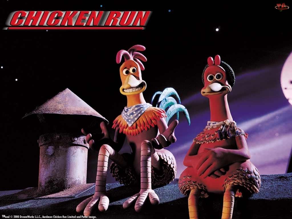 noc, Uciekajace Kurczaki, dach
