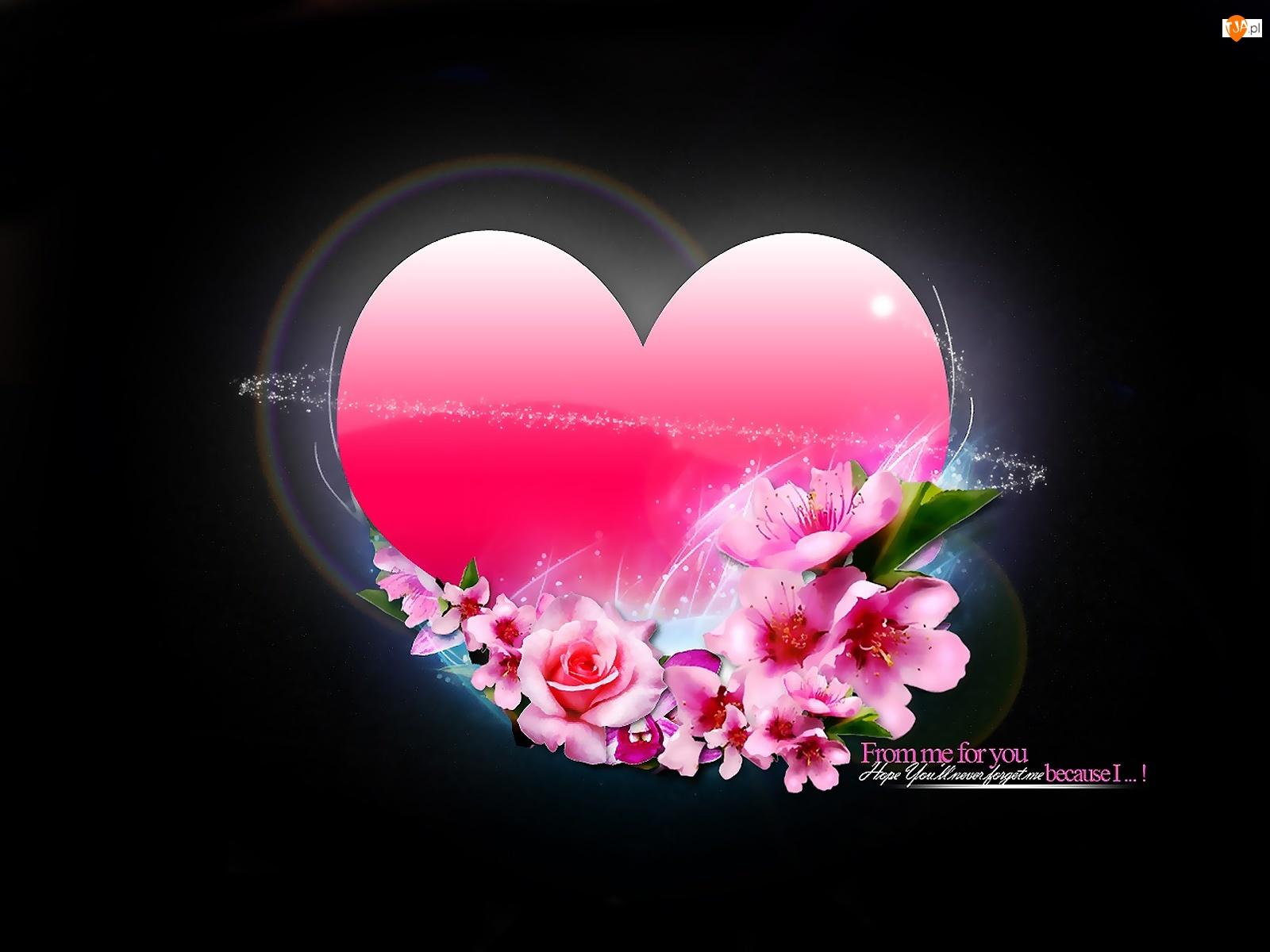 Kwiaty, Różowe, Serce