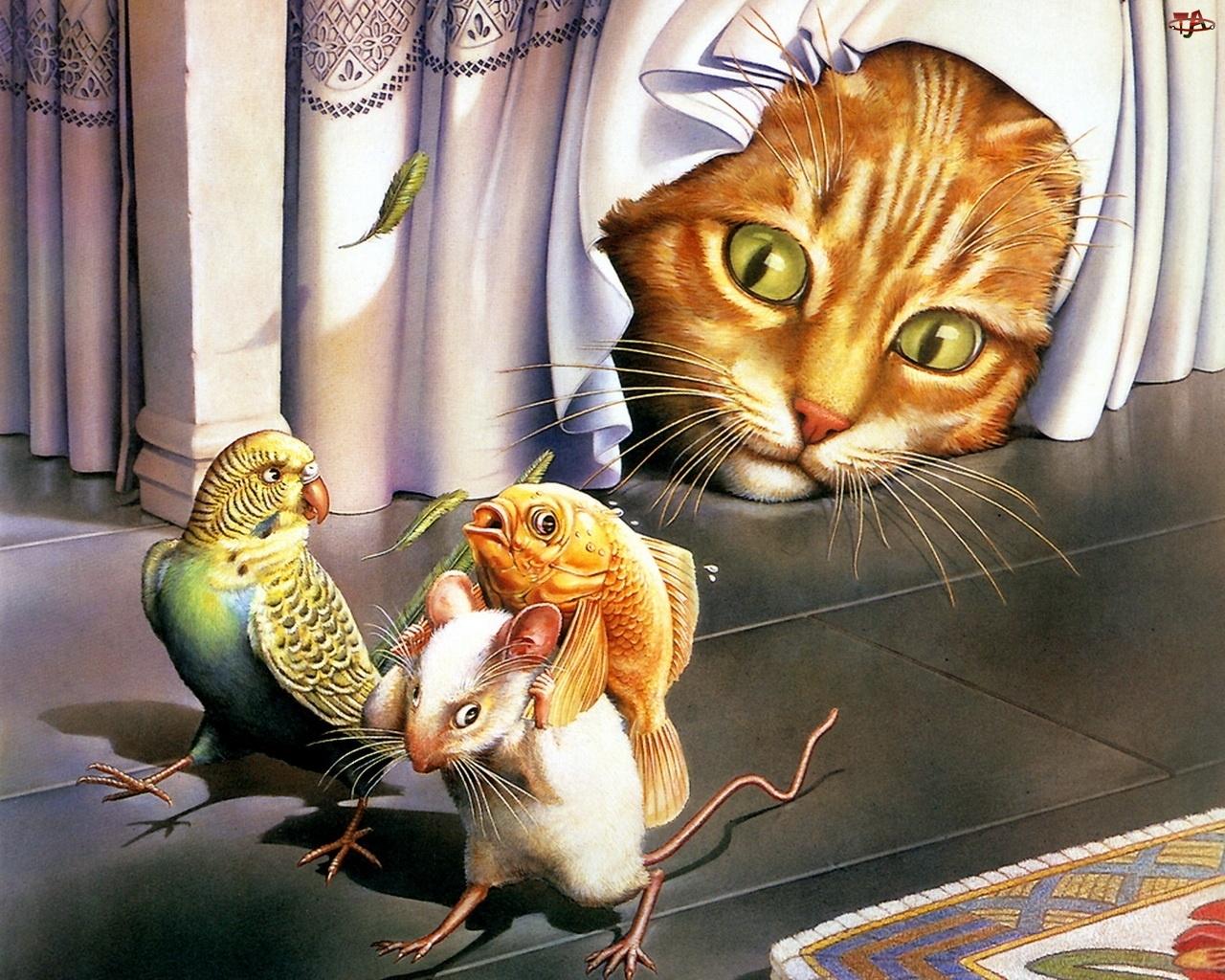 Papuga, Kot, Mysz