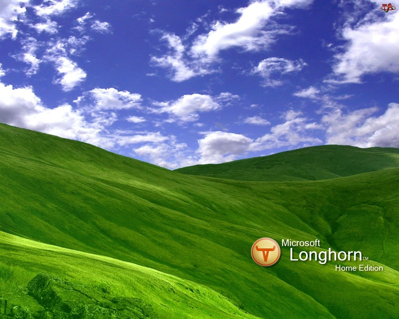łąka, niebo, Longhorn, chmury, wzgórza, trawa