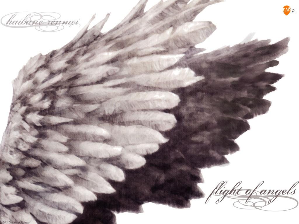 Haibane Renmei, skrzydła