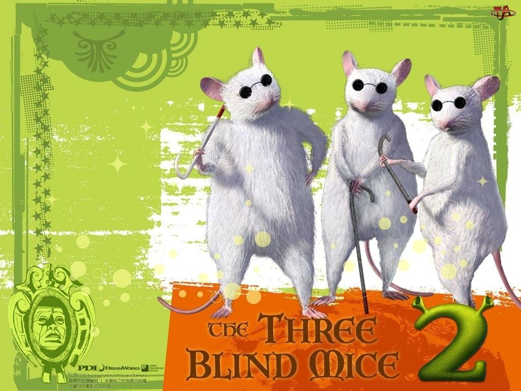 myszy, Shrek 2, ślepe