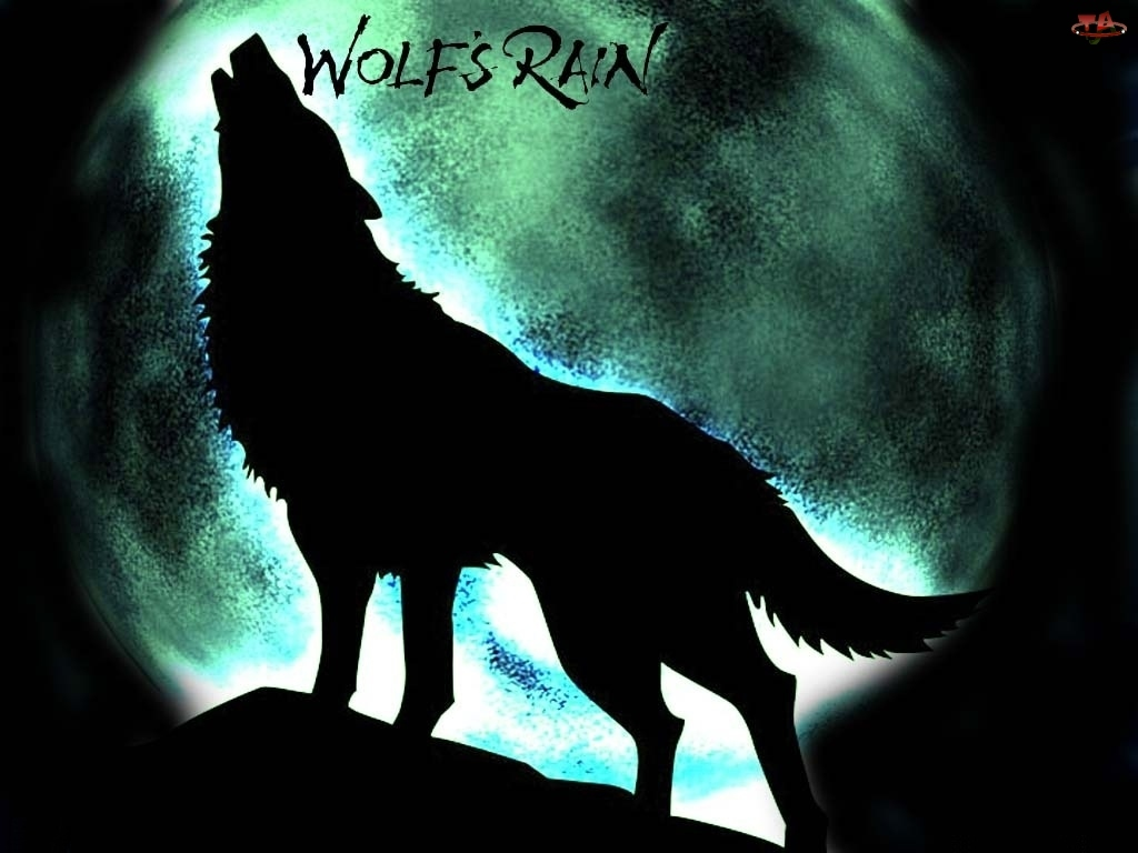wilk, Wolfs Rain, wyje, noc