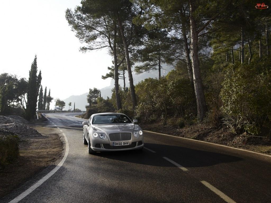 Droga, Bentley Continental, Kręta