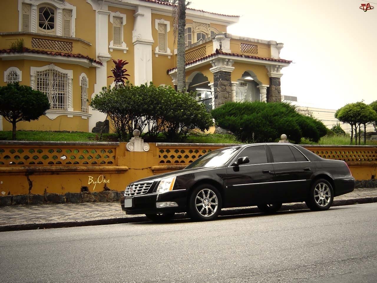 Czarny, Szyby, Cadillac DTS, Przyciemniane