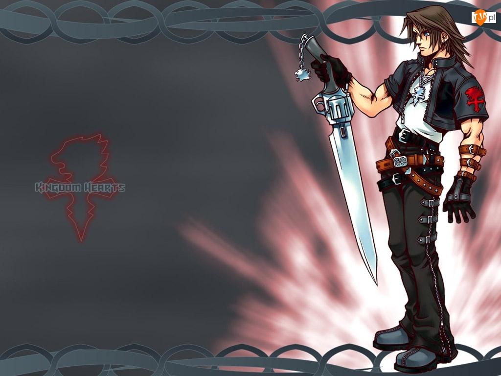 mężczyzna, nóż, postać, Kingdom Hearts, rewolwer
