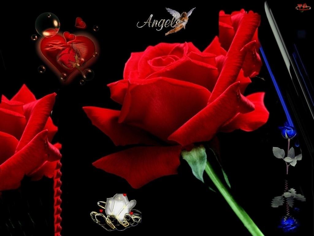 Walentynki, Róże