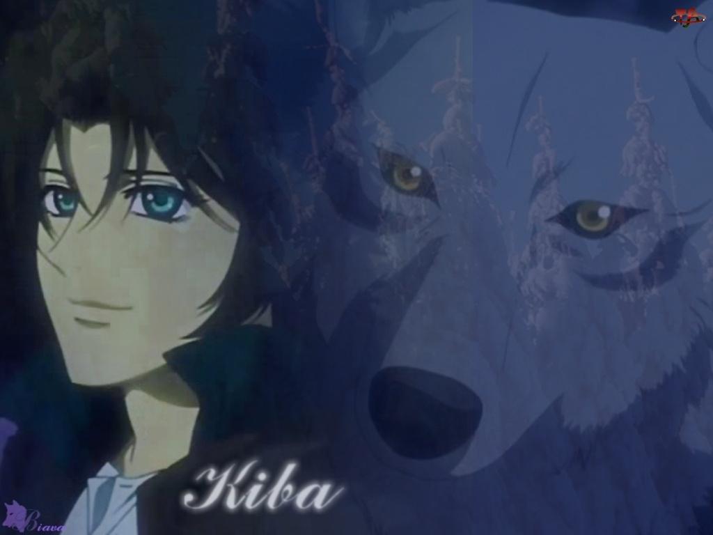 Wolfs Rain, Kiba, wilk