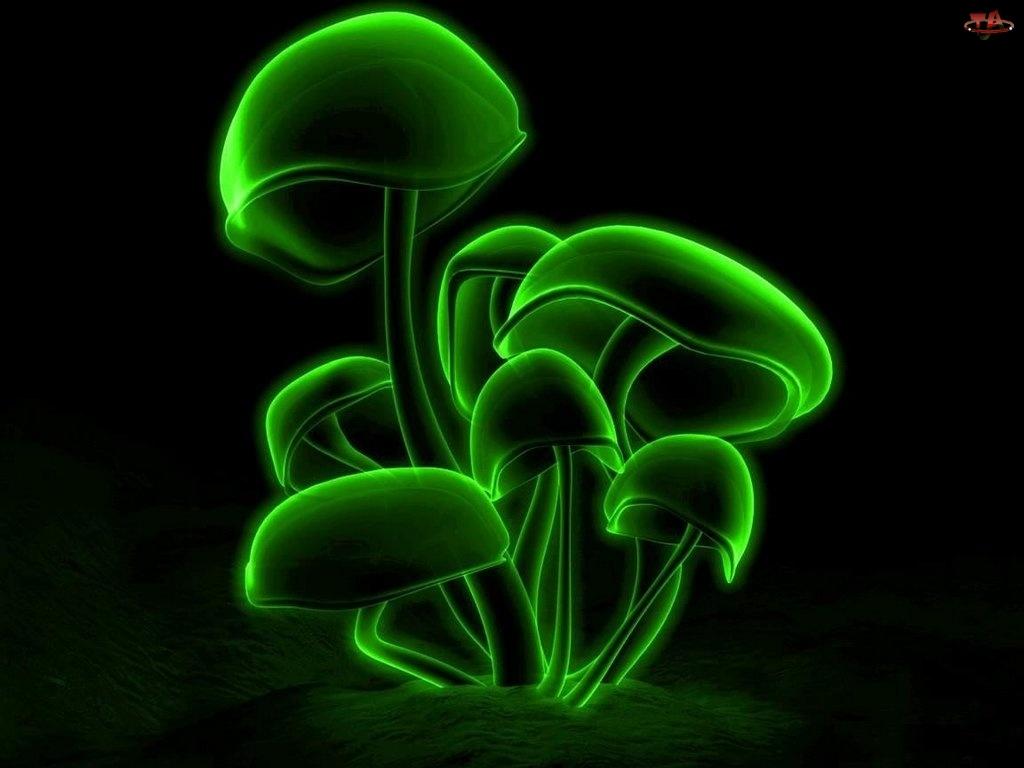 3D, grzyby, Wektorowa, zielone