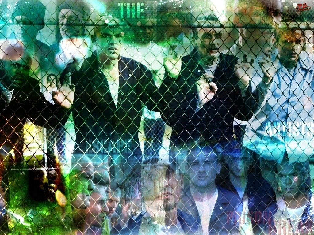 ogrodzenie, Prison Break, siatka