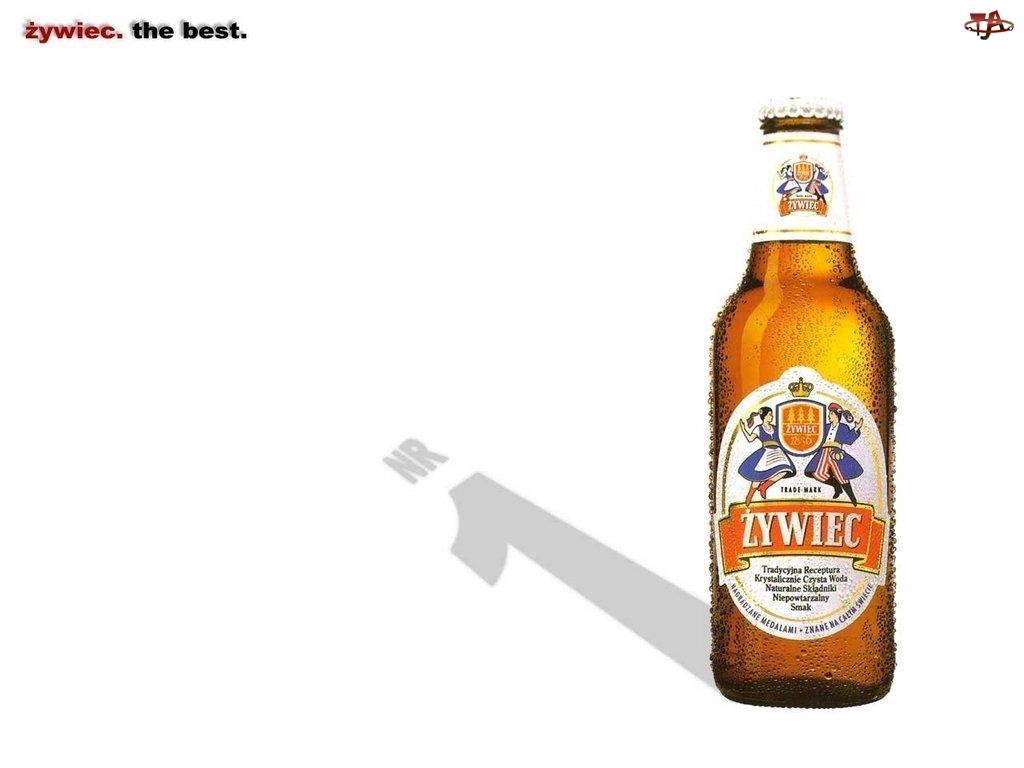 Piwo, Piwo Żywiec