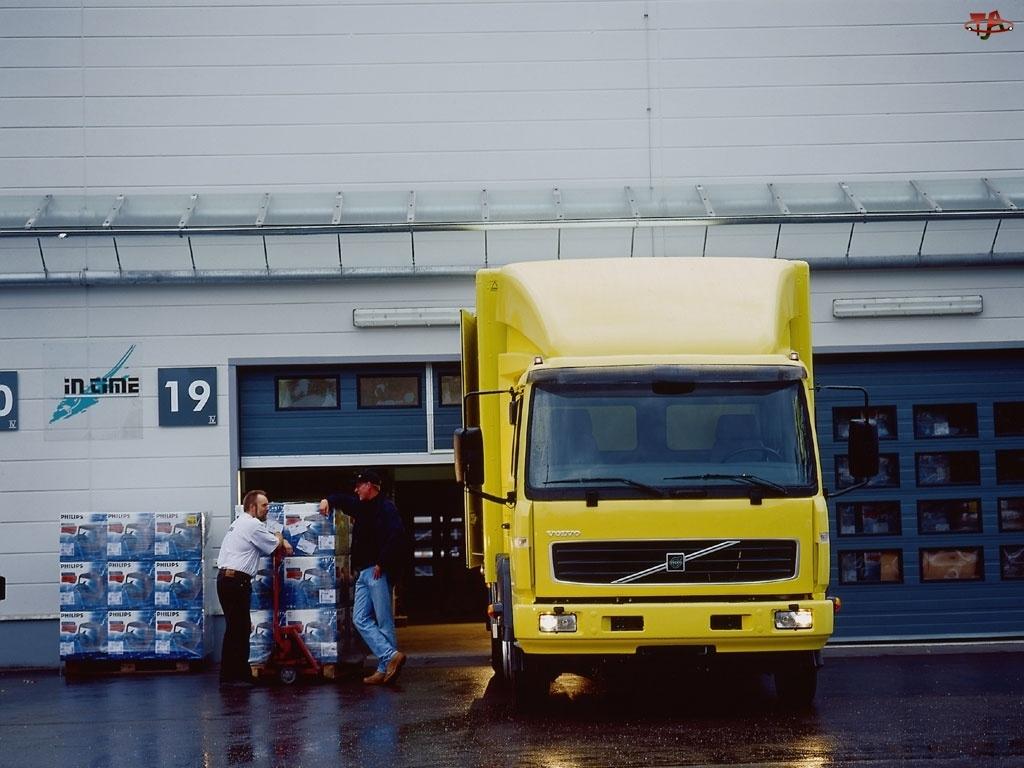 Ciężarówka Volvo, Dostawczy