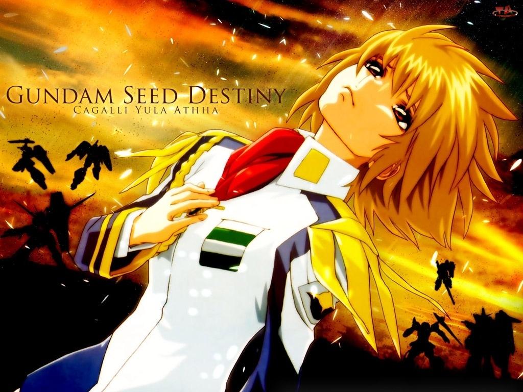 roboty, Gundam Seed, postać