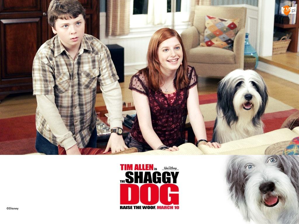 The Shaggy Dog, pokój, pies, dzieci