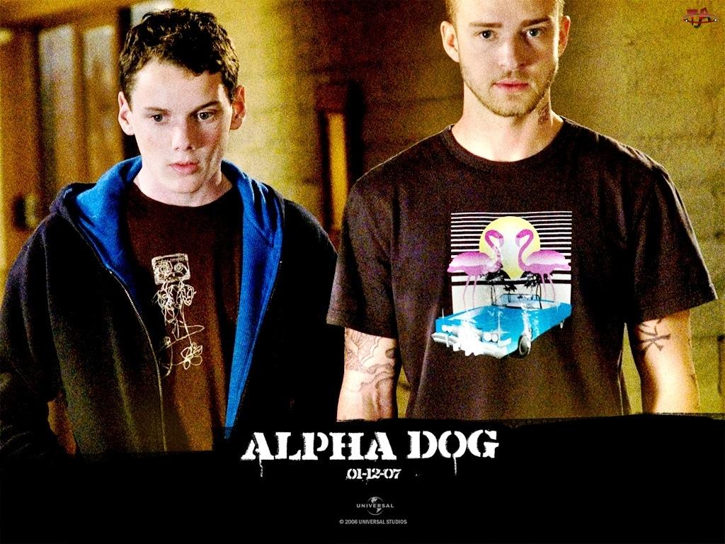 Anton Yelchin, Alpha Dog, Justin Timberlake