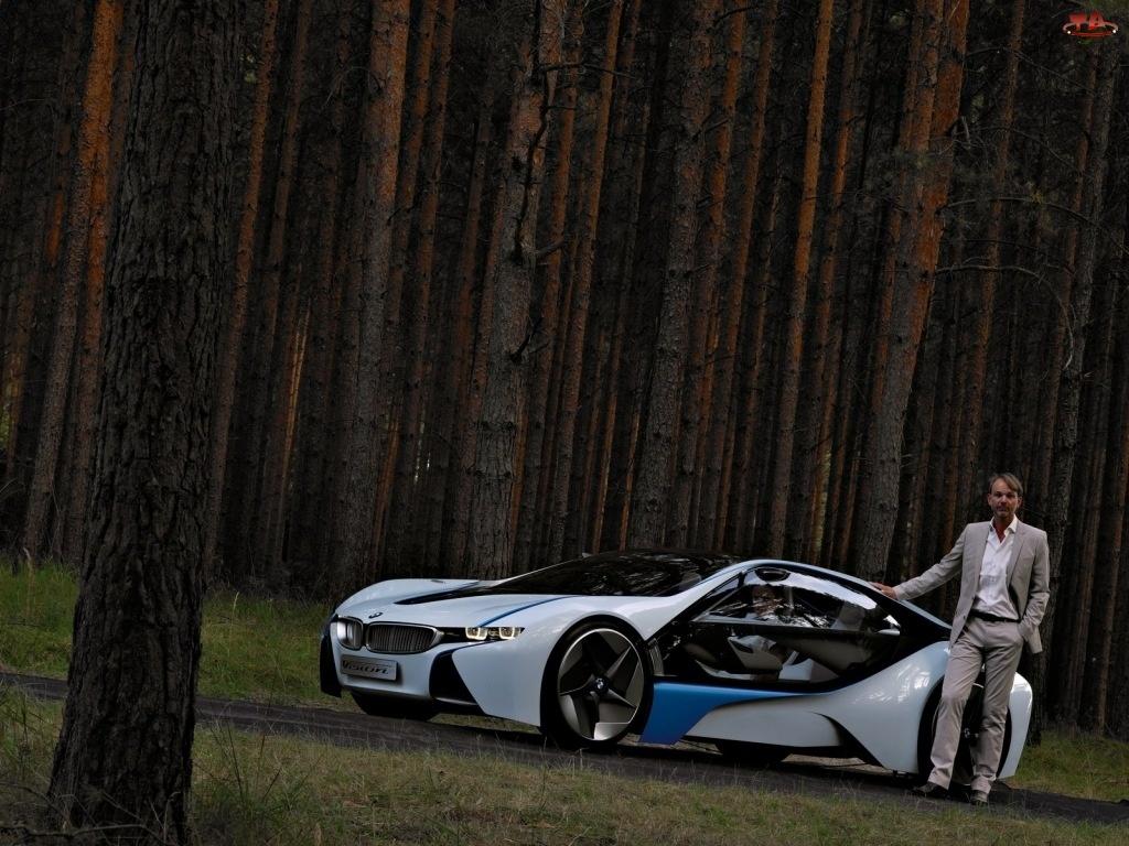 BMW Vision Efficient Dynamics, Kierowca