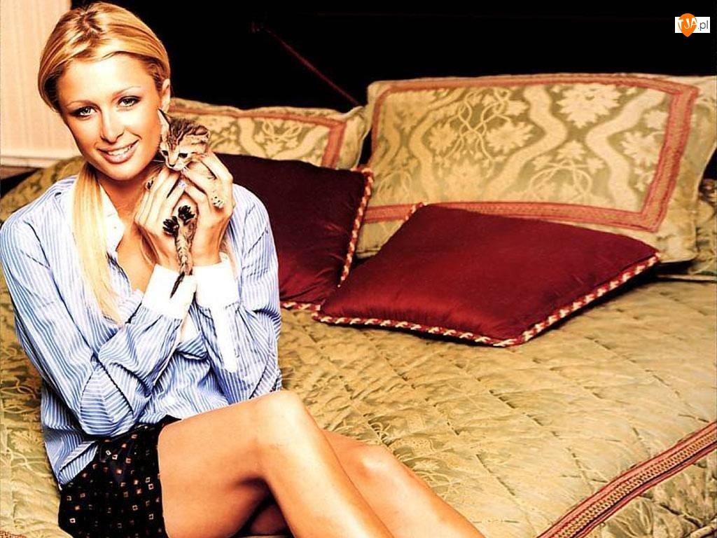Kotek, Paris Hilton, Łózko