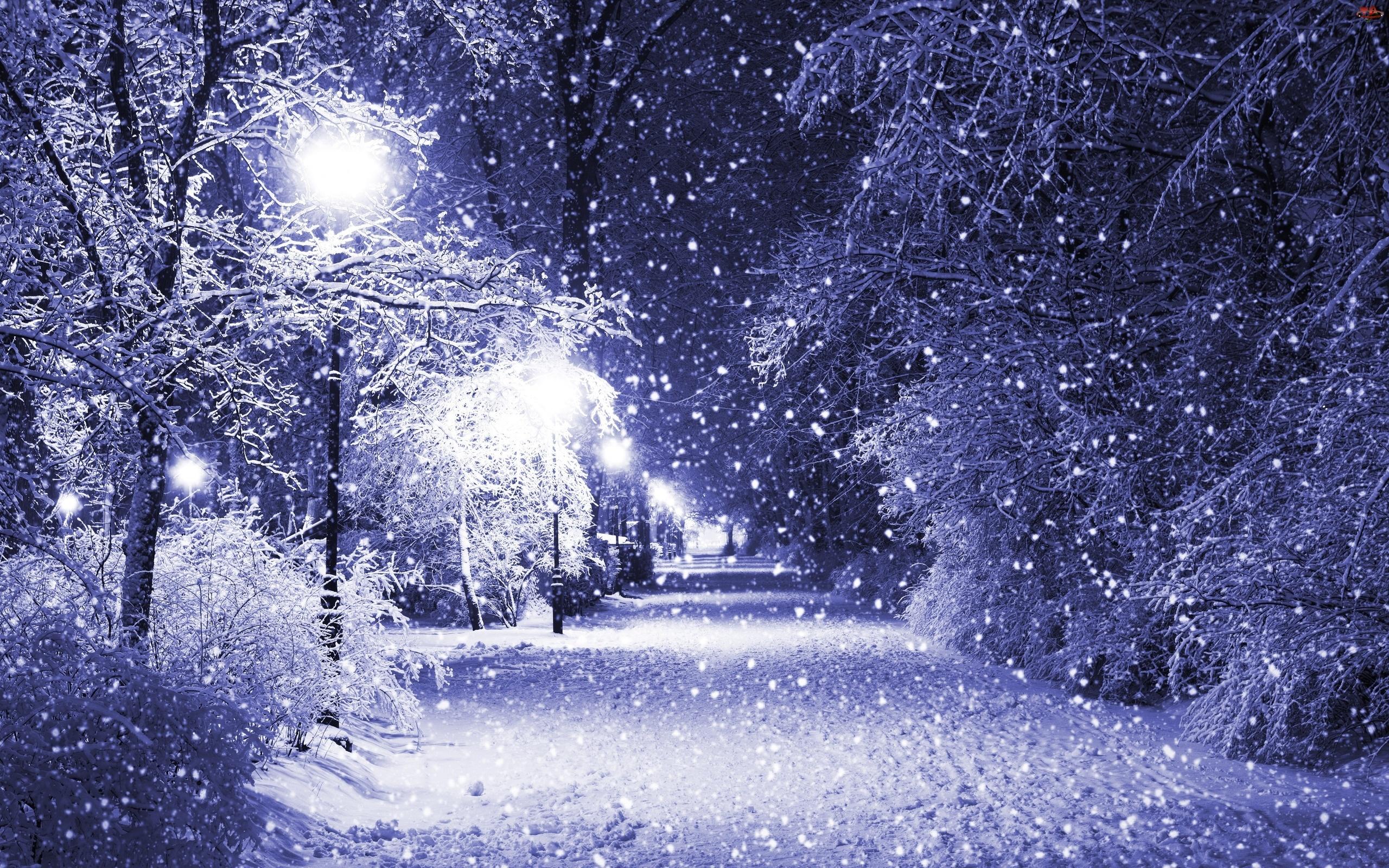 Zima, Śnieg, Noc, Padający