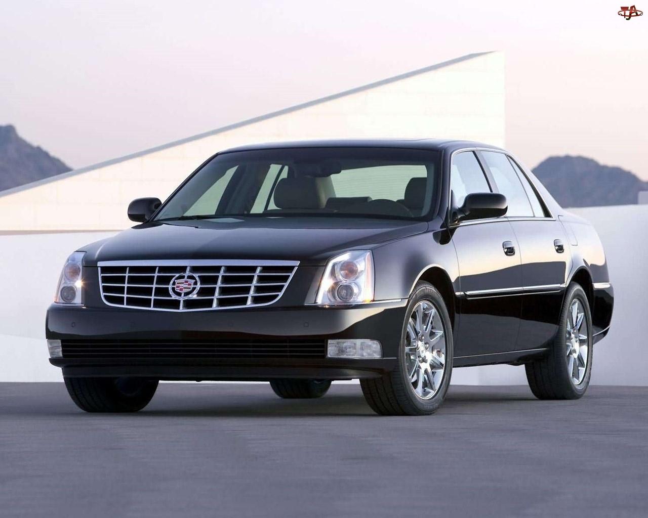 Atrapa, Cadillac DTS, Halogeny