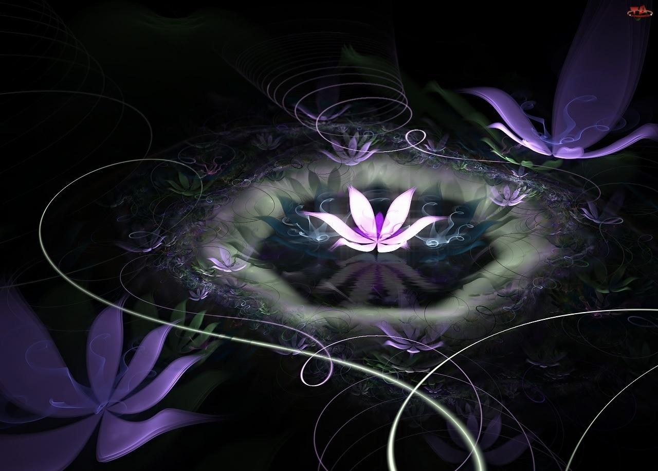 Kwiat, Lotosu
