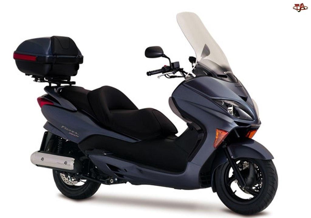 Motor Honda, Skuter