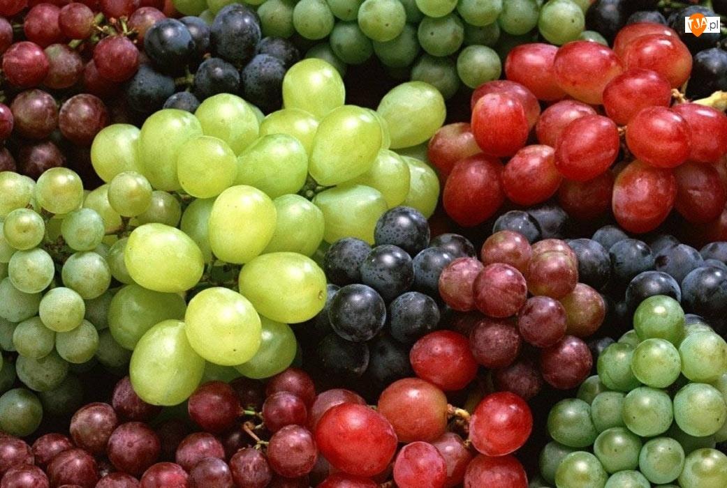 Winogron, Różne, Odmiany