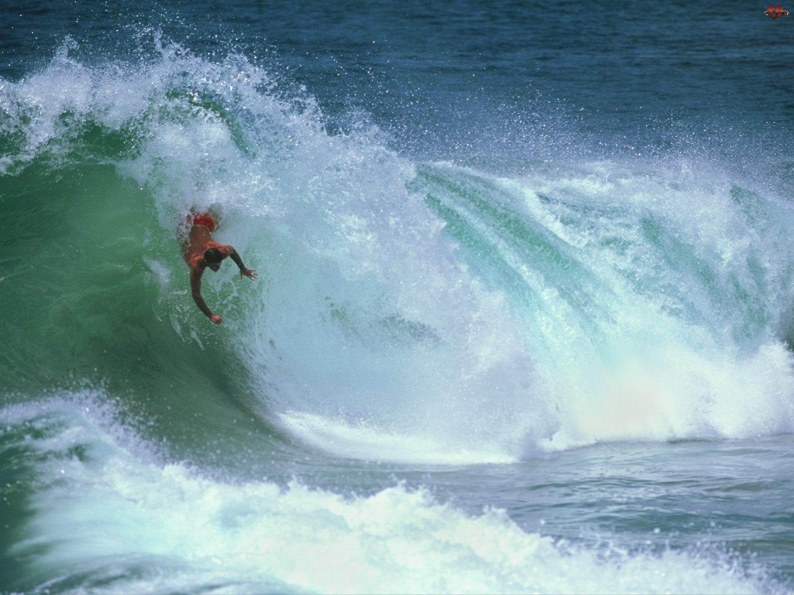Fale, Windsurfing, fala Morze